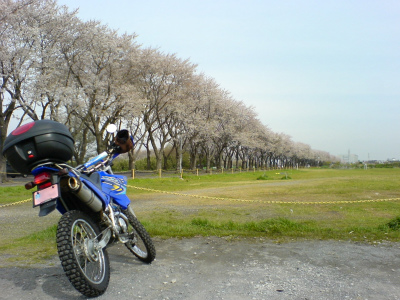 Sn320300_2